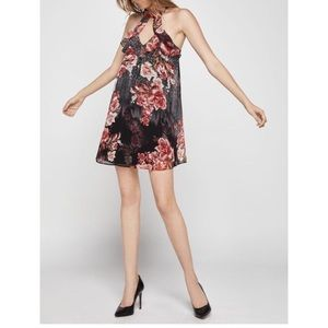 BCBGeneration Dress NWT